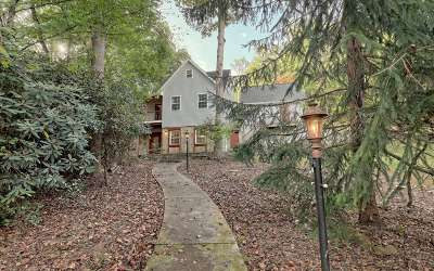 Brasstown Single Family Home For Sale: 15 Haunted Hollow Drive
