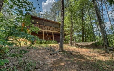 Mineral Bluff Single Family Home For Sale: 80 Deer Trail