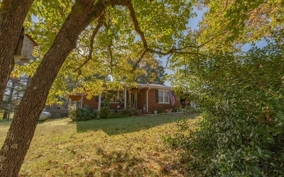 Blairsville Single Family Home For Sale: 271 T Chapel Rd
