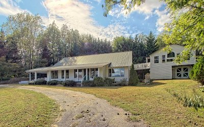 Hiawassee Single Family Home For Sale: 1141 Cedar Cliff