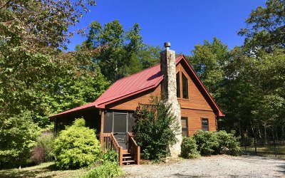 Mineral Bluff Single Family Home For Sale: 468 Logan Drive