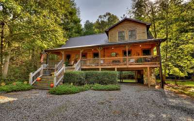 Mineral Bluff Single Family Home For Sale: 308 Creekside Lane
