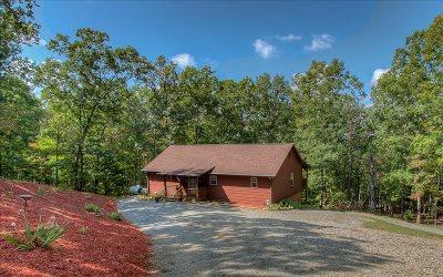 Blairsville Single Family Home For Sale: 678 Warnock Mountain Acr
