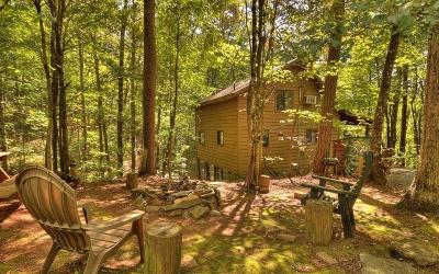 Blue Ridge Single Family Home For Sale: 25 Nickwasi Way