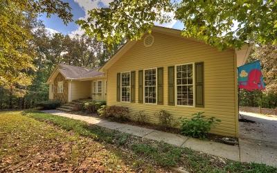 Blue Ridge Single Family Home For Sale: 96 Mull Ridge
