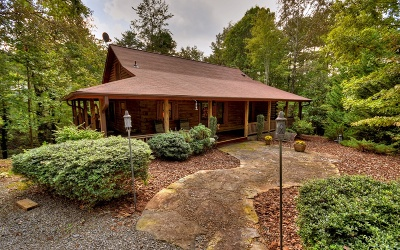 Blue Ridge Single Family Home For Sale: 62 Mountain Tops Lane