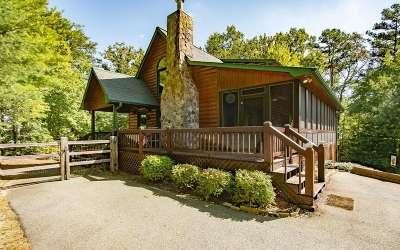 Blue Ridge Single Family Home For Sale: 553 Choctaw Ridge Road