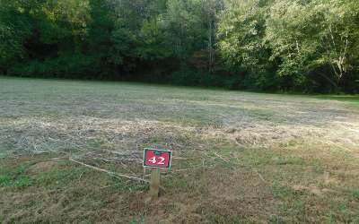 Warne Residential Lots & Land For Sale: Lt 42 Brasstown Trails