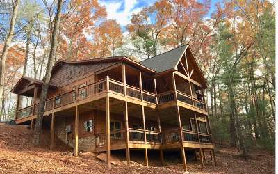 Gilmer County Single Family Home For Sale: Big Creek Rd