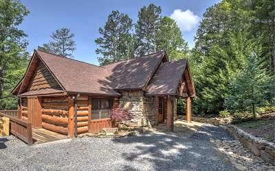Blue Ridge Single Family Home For Sale: 61 Tilley Bend Trail