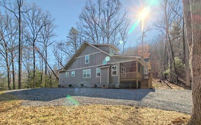 Hiawassee Single Family Home For Sale: 4838 Hf Lyons Rd