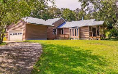 Blairsville Single Family Home For Sale: 248 Ed King Rd