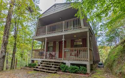 Ellijay Single Family Home For Sale: 393 Garnet Drive