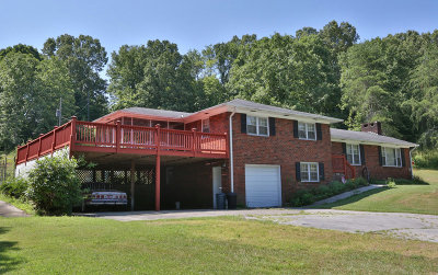 McCaysville Single Family Home For Sale: 22 Orange Lane