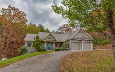 Blairsville Single Family Home For Sale: 141 Brooke Court