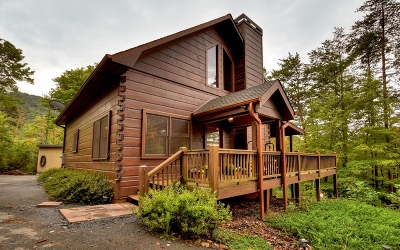Blue Ridge Single Family Home For Sale: 375 Crabapple Drive