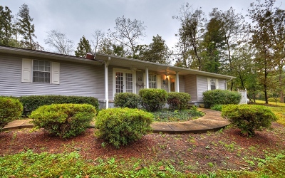 Blairsville Single Family Home For Sale: 1554 Lower Owltown Rd