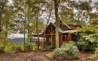 Blue Ridge Single Family Home For Sale: 265 Deer Hunter Trail