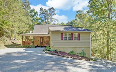 Blairsville Single Family Home For Sale: 246 Autumn Lane