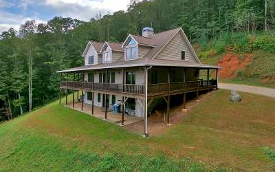 Blairsville Single Family Home For Sale: 863 Stennes Gap Rd.