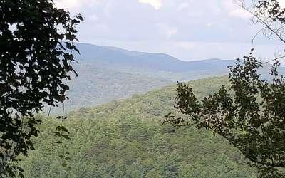Ellijay Residential Lots & Land For Sale: Fox Mountain Estates