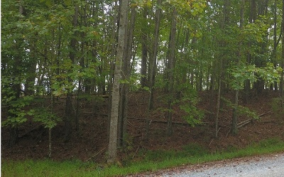 Ellijay Residential Lots & Land For Sale: Francis Way
