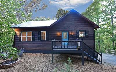 Ellijay Single Family Home For Sale: 196 Amherst Court