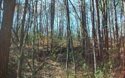 Murphy Residential Lots & Land For Sale: Lot12 Mountain Top Road