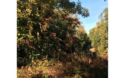 Hayesville Residential Lots & Land For Sale: Woodland Lane