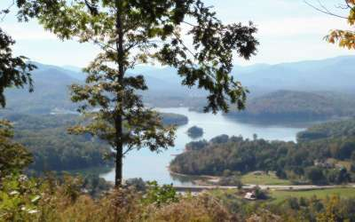 Hayesville Residential Lots & Land For Sale: Lt 15 Bell Lake View