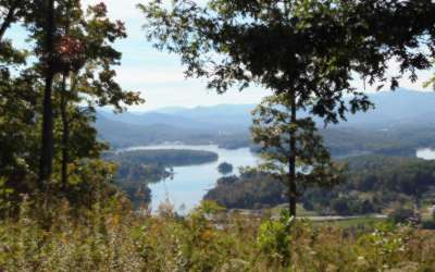 Hayesville Residential Lots & Land For Sale: Lt 1 Crawford Heights