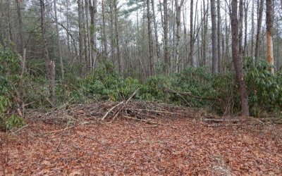 Robbinsville Residential Lots & Land For Sale: 6b7a Carpenter Hollow
