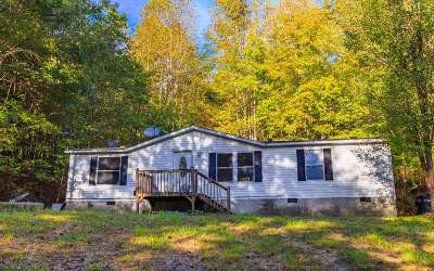 Ellijay Single Family Home For Sale: 120 Henry Cantrell Rd