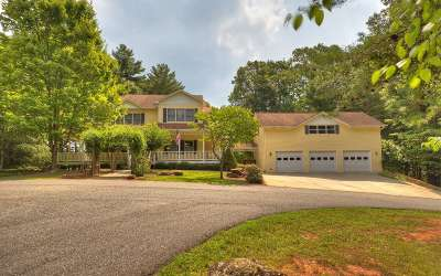 Ellijay Single Family Home For Sale: 130 Blackberry Circle