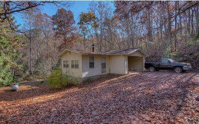 Morganton GA Single Family Home For Sale: $249,900