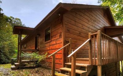 Blue Ridge Single Family Home For Sale: 8240 Aska Road