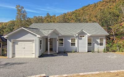 Hiawassee Single Family Home For Sale: 2173 Carlin Road