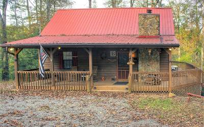 Mineral Bluff Single Family Home For Sale: 194 Twin Springs Road