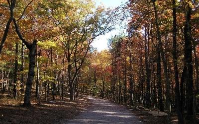 Jasper Residential Lots & Land For Sale: 201 Mystic Trail