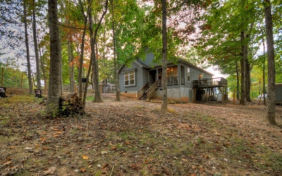 Blairsville Single Family Home For Sale: 60 Diana Drive