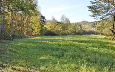 Young Harris Residential Lots & Land For Sale: #11 Morgan Creek