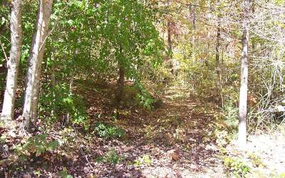 Murphy NC Residential Lots & Land For Sale: $29,900