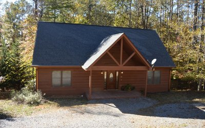 Ellijay Single Family Home For Sale: 250 Carlisle Drive
