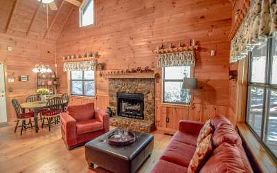 Blairsville Single Family Home For Sale: 186 Henry Young Lane