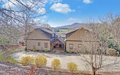 Hiawassee GA Single Family Home For Sale: $1,250,000