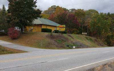 Hiawassee Commercial For Sale: 3064 Us Hwy 76