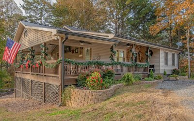 Blue Ridge Single Family Home For Sale: 155 Wash Wilson Loop