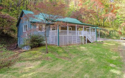 Cherry Log Single Family Home For Sale: 496 John Waters Rd