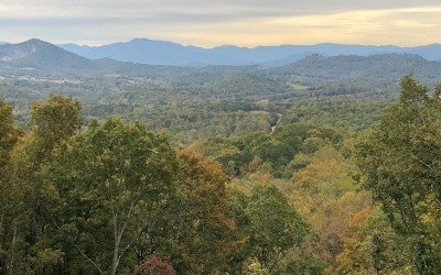 Towns County Single Family Home For Sale: 8085 True Love Mtn. Rd.