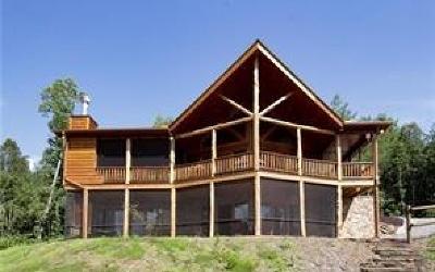 Blue Ridge Single Family Home For Sale: 49 Big Poplar Trail
